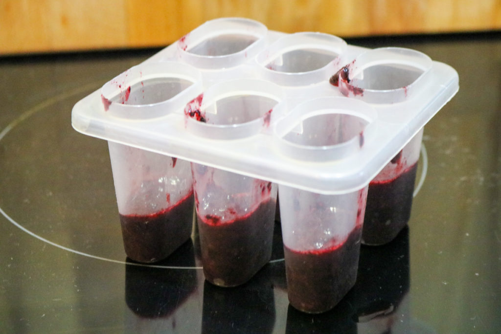 Add 1 tbsp. blueberry puree to mold