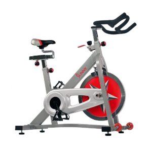 Sunny Health & Fitness SF-B901 Bike